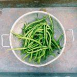 Purée de haricots verts frais