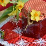 Confiture fraise au cookeo