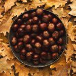 Châtaignes feuilles de figuier et anis étoilés au cookeo