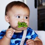 La diversification de bébé de 5 à 12 mois